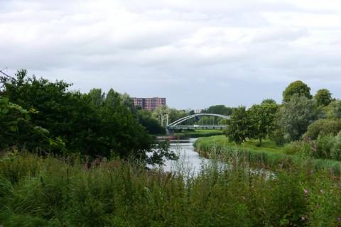 Природа в Германии. Река Траве в Любеке