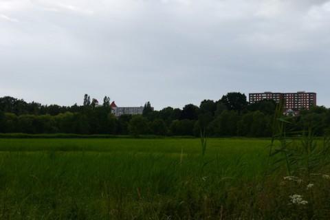 Лужайка в Любеке