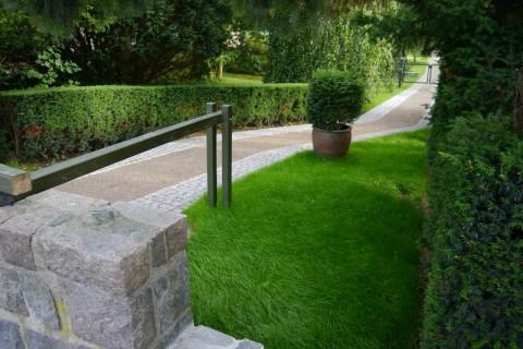 Красивая трава на улице Любека