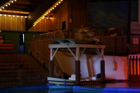 Зал, где проводятся шоу морских котиков